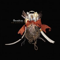 Bowerbirds – The Clearing